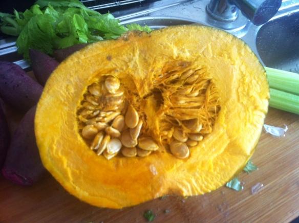 pumpkin, squash